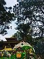 Lord Buddha.img.jpg