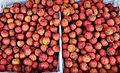 Lychee fruits Chinatown Toronto.JPG