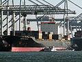 Maersk Penang Port of Rotterdam 25-Feb-2006.jpg