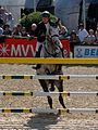 Maimarkt Mannheim 2014 - 51. Maimarkt-Turnier-109.JPG