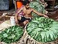 Man Selling Betel Leaves - Public Market - Anuradhapura - Sri Lanka (13964761300).jpg