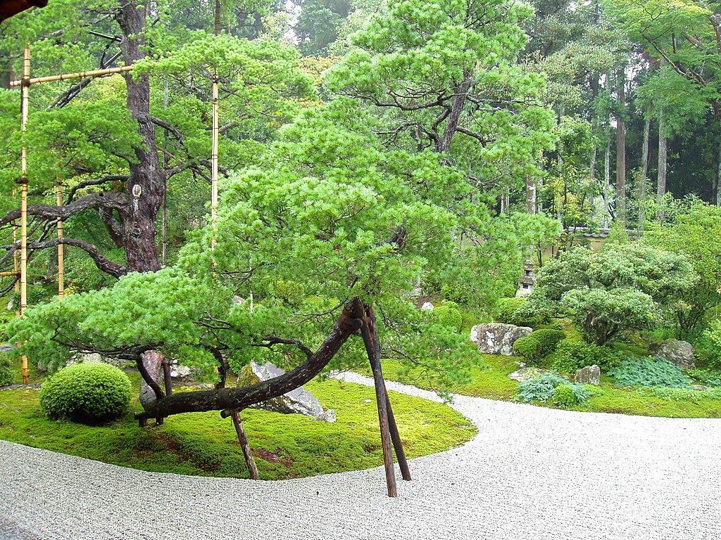 Manshuin Temple, Kyoto - garden
