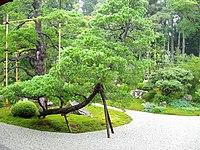 Manshuin Temple, Kyoto - garden.JPG