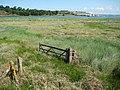 Marshland in the Torridge estuary - geograph.org.uk - 1355608.jpg