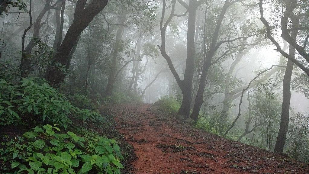 Matheran - Top Trekking Destinations in Mumbai