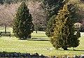 Memorial Garden - geograph.org.uk - 236125.jpg