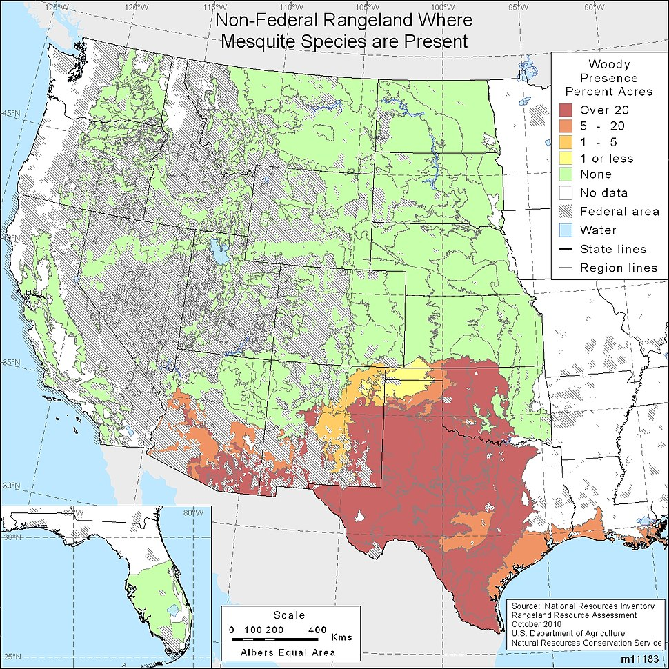 Mesquite Range in the United States