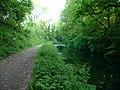 Mid Devon , Grand Western Canal - geograph.org.uk - 1332262.jpg