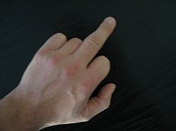 Middle finger.jpg