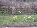 Mile Stone,Wallash - geograph.org.uk - 362928.jpg