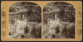 Mirror Lake, from Robert N. Dennis collection of stereoscopic views 2.png