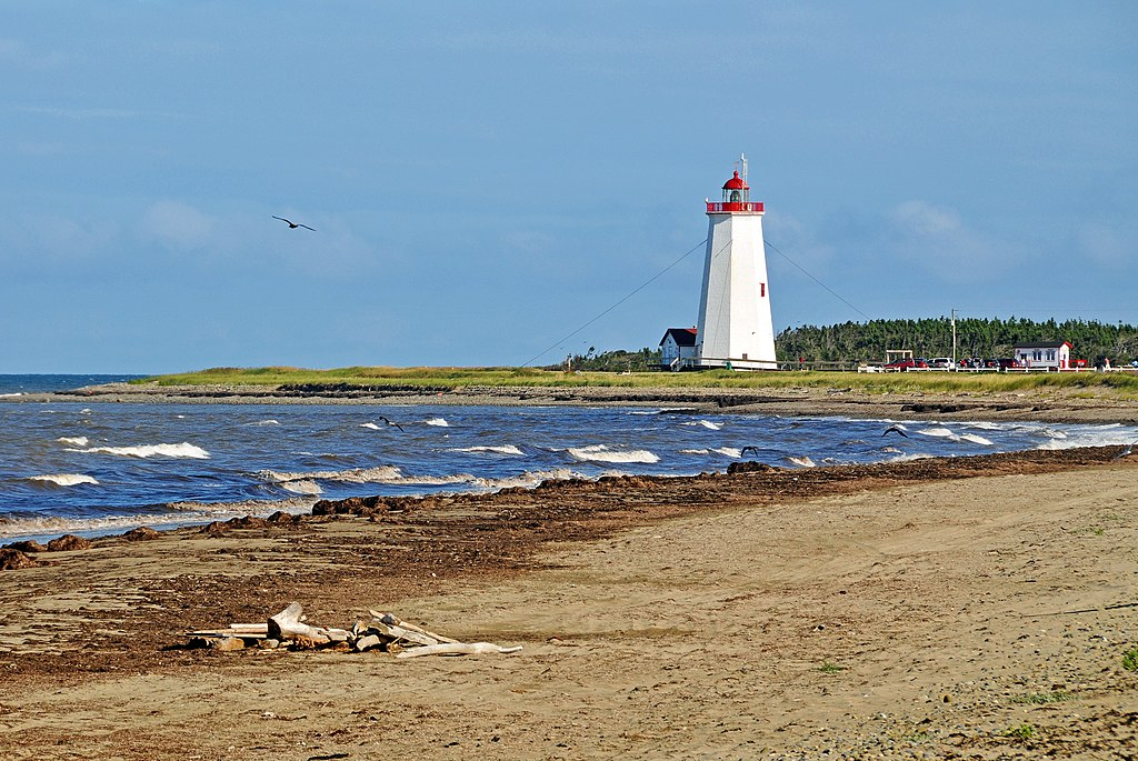 St Lawrence Bay Beach Essex Dog Walking