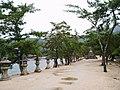 Miyajima island 4.jpg