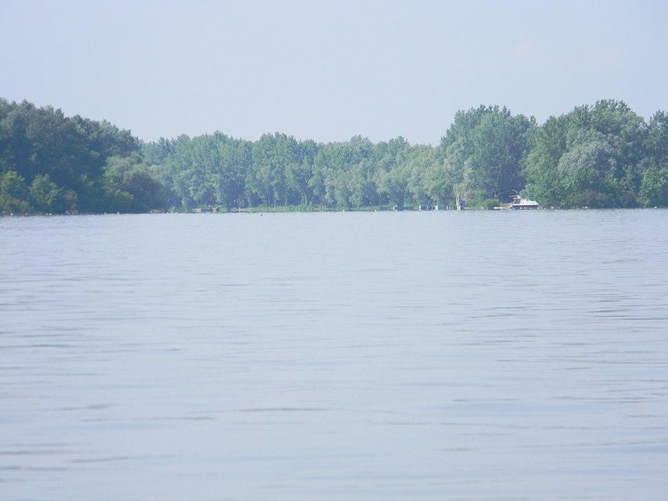 Mlava estuari (Danube)