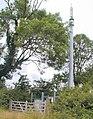 Mobile Phone Mast, East Leake - geograph.org.uk - 25131.jpg