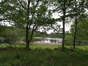 Mollsjön, Vättlefjäll.jpg