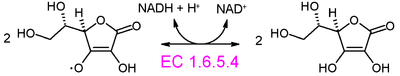 Monodehydroascorbate reductase (NADH) reaction.PNG