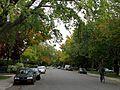 Montréal rue St-Denis 348 (8337485717).jpg