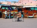 Morocco CMS CC-BY (15148991973).jpg