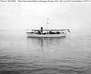 Motorboat Anton Dohrn at Tortugas.jpg