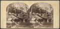 Mountain Gorge, on the Catskills, by London Stereoscopic View Co..png