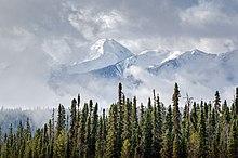 Derrière une façade de sapins probables, des montagnes enneigées sortent des nuages.
