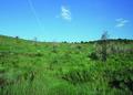 NRCSCO01015 - Colorado (1421)(NRCS Photo Gallery).tif