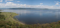 Naivasha lake.jpg