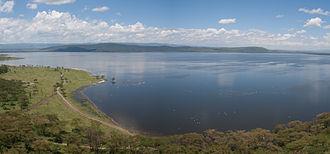 Lake Naivasha - Lake Naivasha, 2012