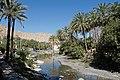 Nakhl Springs.jpg