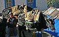 Namche Bazaar-58-Tragtiere-Frau-2007-gje.jpg