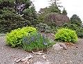 National Arboretum in May (23491022371).jpg
