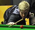 Neil Robertson at Snooker German Masters (DerHexer) 2013-01-30 11.jpg