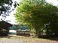 Neuss-Kaarst, Am Kaarster See - geo.hlipp.de - 5874.jpg