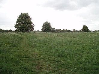 New Buckenham Common - Image: New Buckenham Common geograph.org.uk 433216