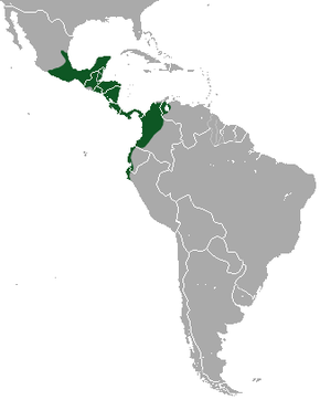 Description de l'image Northern Tamandua area.png.