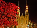 Notre-Dame Catherdral Basilica Ottawa by Louie Luo.jpg