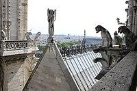 Notre Dame de Paris Roof View 2.jpg