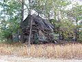 Nutbush TN abandoned house 3.jpg