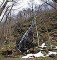 Oisase stream , 奥入瀬渓流 - panoramio (4).jpg