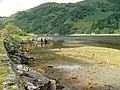 Old Jetty on Loch Beag - geograph.org.uk - 265212.jpg