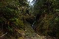 On the trekking trail to Ghorepani - panoramio (2).jpg