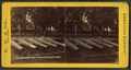 Ordnance park, Charlestown Navy Yard, from Robert N. Dennis collection of stereoscopic views 3.png