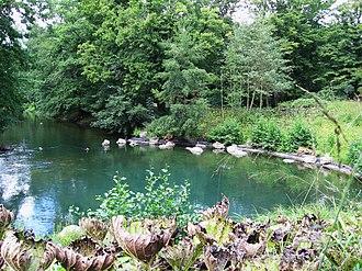 Loiret (river) - Le Bouillon
