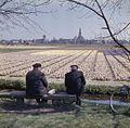 Overzicht over de bloemenvelden met het dorp op de achtergrond - Lisse - 20382306 - RCE.jpg
