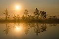 Päikesetõus Kõrvemaal.jpg