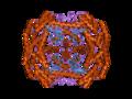 PDB 2hcv EBI.png