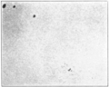 PSM V83 D113 Direct photo of part of the sun on april 30 1908.png
