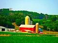 Padrurti Family Farm - panoramio.jpg
