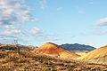 Painted Hills 2009.08.13.11.08.56.jpg